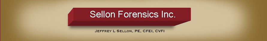 Sellon Forensics Inc.